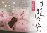 (令和二年分販売終了)桜まんじゅう/8個入り/15個入り 【1月~3月】