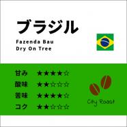 ブラジル バウ農園 トミオフクダ  Dry On Tree