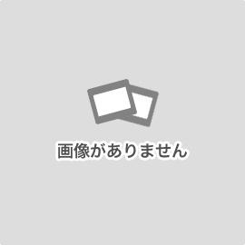 + WR-40/40S (40 36 10)